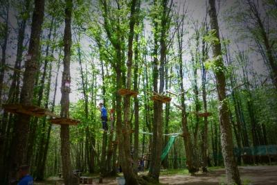 Il Parco degli Elfi